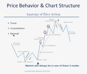 Price Action Trading and their trends
